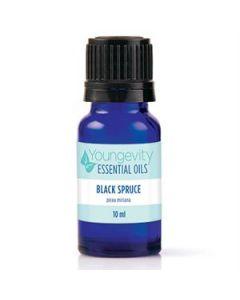 Black Spruce Essential Oil - 10ml